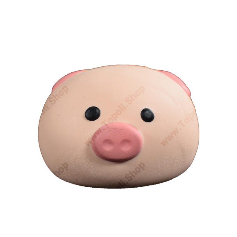 اسکویشی خوک وکیوم