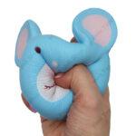 اسکویشی موش موشی
